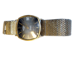 Watch With Non Precious Strap Low Carat